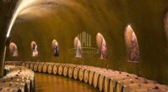 WINE AND CAVA WINE CELLAR – EXTREMADURA, SPAIN