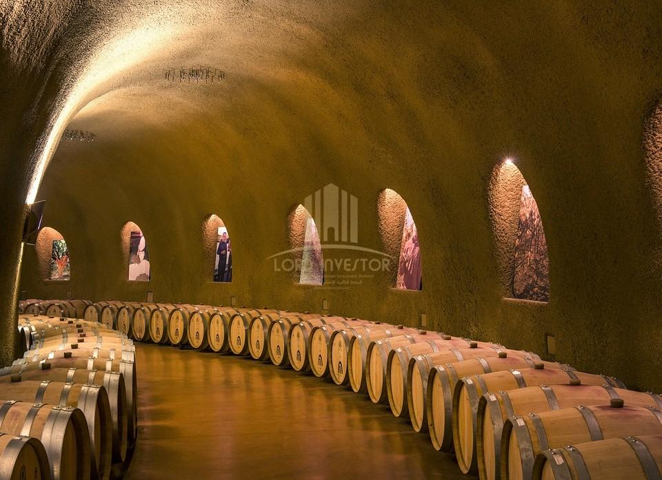 WINE AND CAVA WINE CELLAR – EXTREMADURA, SPAIN